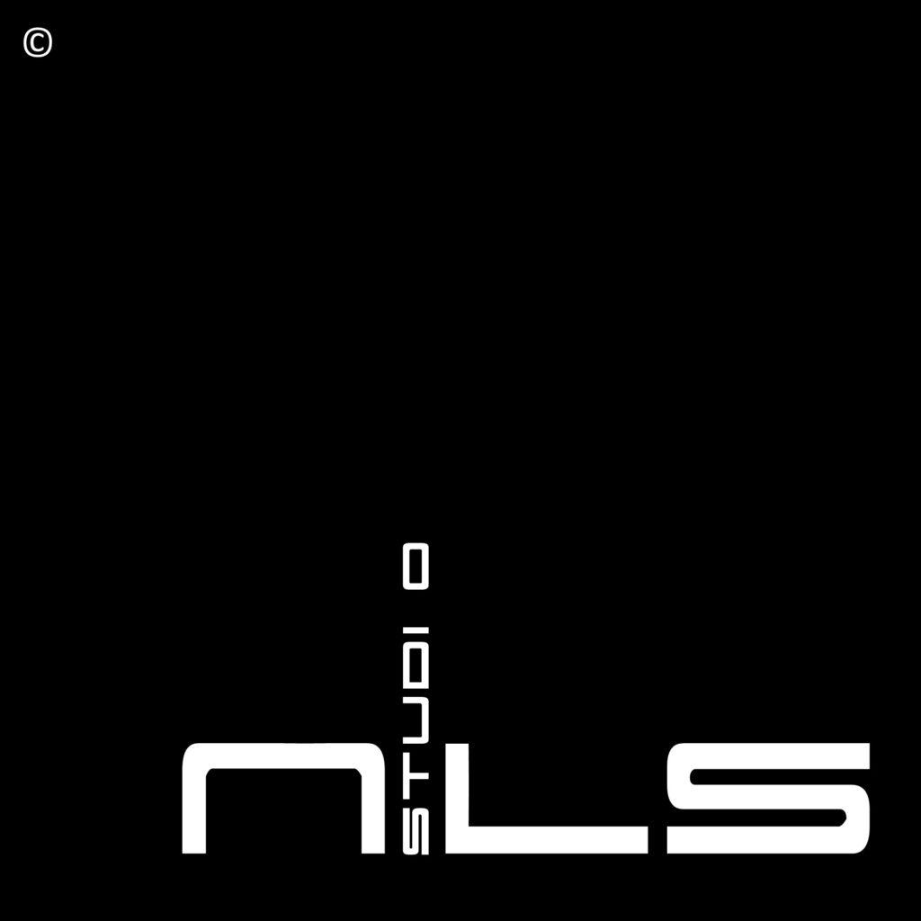 Referentie Logo Studio Nils